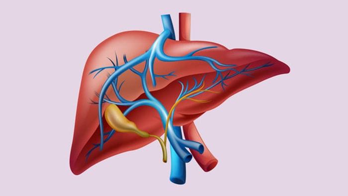 Những triệu chứng viêm gan siêu vi B dễ nhận biết nhất
