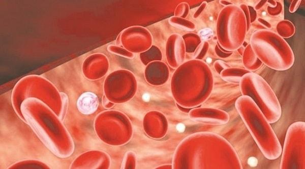 Huyết sắc tố tăng cao nguy hiểm như thế nào? 1