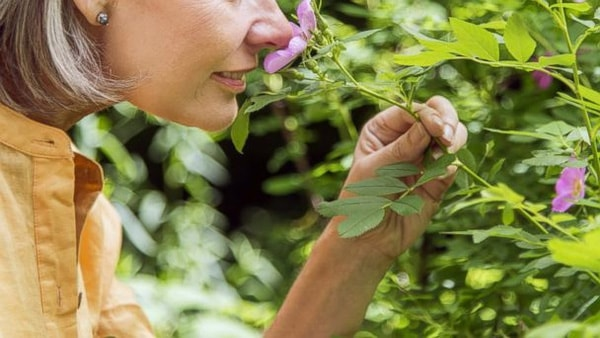 Chứng ảo giác khứu giác làm cho người bệnh cảm nhận được những mùi không có trong thực tế