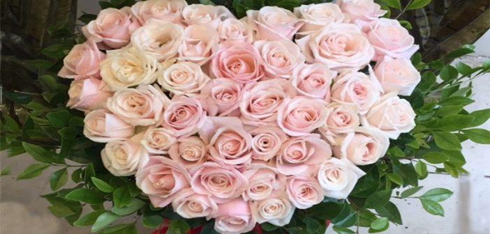 Bỏ túi 5 mẫu hoa tặng sinh nhật mẹ đẹp nhất