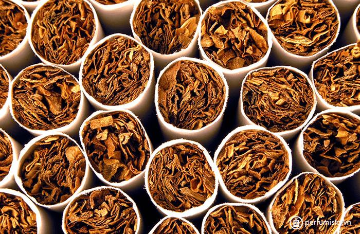 Kiểm định thuốc lá thật - giả qua chiều dài các điếu thuốc