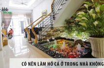 Có nên làm hồ cá ở trong nhà không?
