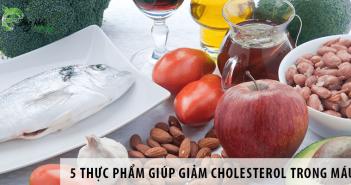 5 thực phẩm giúp giảm cholesterol trong máu tốt nhất