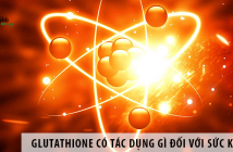 Glutathione có tác dụng gì đối với sức khỏe?