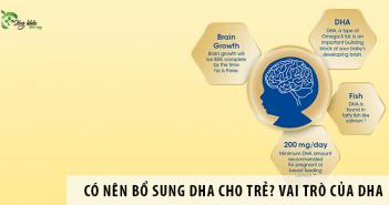 Có nên bổ sung DHA cho trẻ? Vai trò của DHA với sự phát triển của trẻ